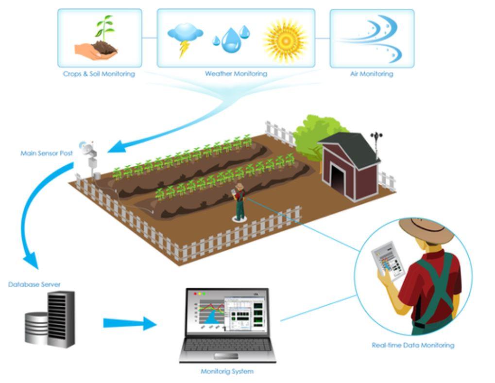 کشاورزی هوشمند و اینترنت اشیا
